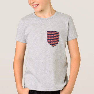 USA Flag pocket patriotic serengetee design tshirt