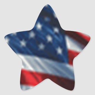USA Flag Star Sticker