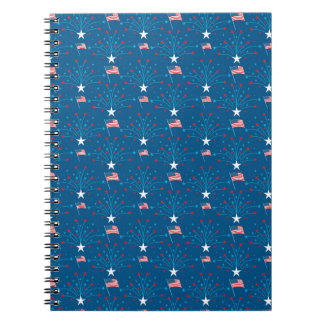 USA Flags and Fireworks Notebook
