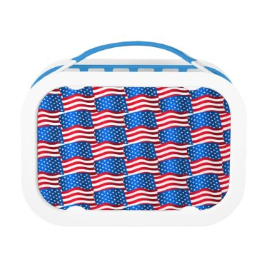 USA Themed USA flags Lunch Box