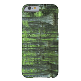 USA, Florida, Apalachicola National Forest, Bald Barely There iPhone 6 Case