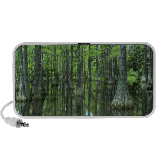 USA, Florida, Apalachicola National Forest, Bald Portable Speaker