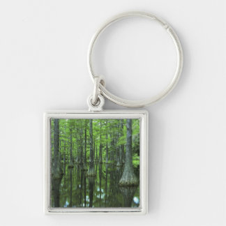 USA, Florida, Apalachicola National Forest, Bald Silver-Colored Square Keychain