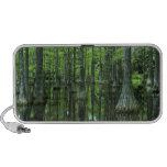 USA, Florida, Apalachicola National Forest, Bald iPod Speakers
