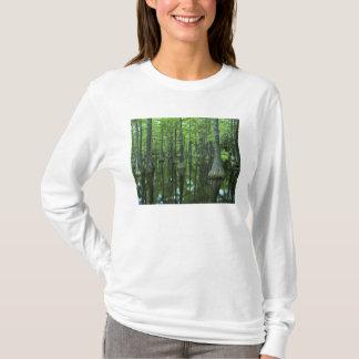 USA, Florida, Apalachicola National Forest, Bald T-Shirt