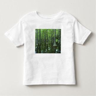 USA, Florida, Apalachicola National Forest, Bald Toddler T-shirt