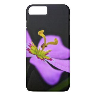 USA, Florida, Big Cypress National Preserve iPhone 7 Plus Case
