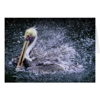 USA, Florida. Brown Pelican Card