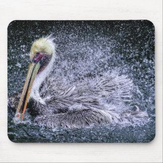 USA, Florida. Brown Pelican Mouse Pad