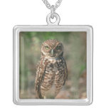 USA, Florida, Burrowing Owl. 2 Silver Plated Necklace