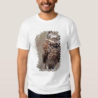 USA, Florida, Burrowing Owl. T-Shirt