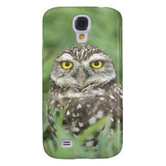 USA, Florida, Cape Coral, Burrowing Owl (Athene Samsung S4 Case