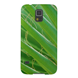 USA, Florida. Close Up Of Palm Fronds Galaxy S5 Case