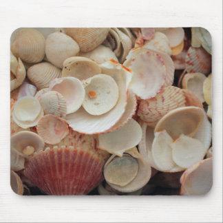 USA, Florida. Close Up Of Shells On Santa Rosa Mouse Pad