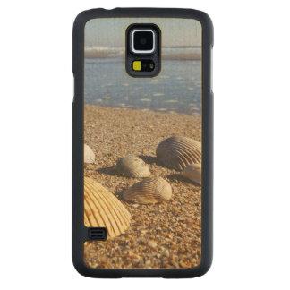 USA, Florida, Coastal Sea Shells Carved Maple Galaxy S5 Case