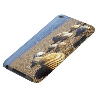 USA, Florida, Coastal Sea Shells Case-Mate iPod Touch Case
