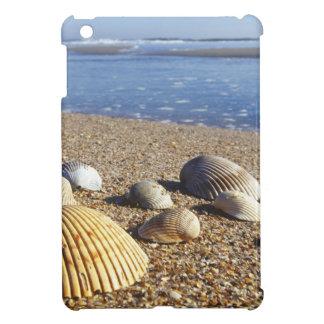 USA, Florida, Coastal Sea Shells Cover For The iPad Mini