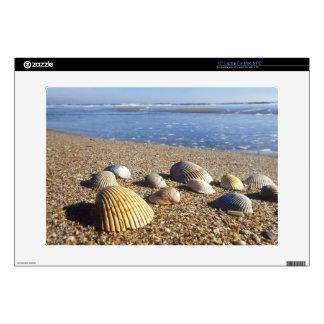 USA, Florida, Coastal Sea Shells Decals For Laptops