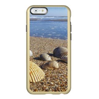 USA, Florida, Coastal Sea Shells Incipio Feather Shine iPhone 6 Case
