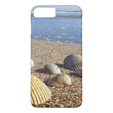 USA Themed USA, Florida, Coastal Sea Shells iPhone 7 Plus Case