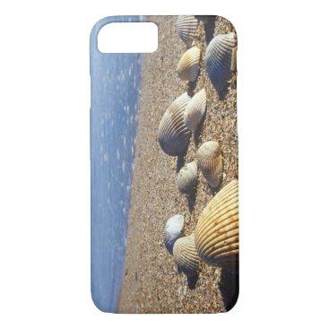 USA Themed USA, Florida, Coastal Sea Shells iPhone 8/7 Case