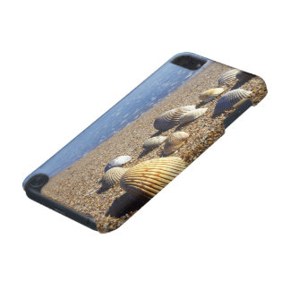 USA, Florida, Coastal Sea Shells iPod Touch 5G Case