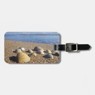 USA, Florida, Coastal Sea Shells Luggage Tag