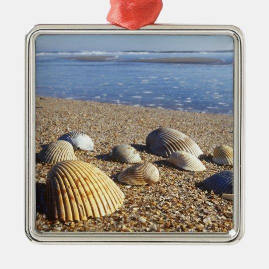 USA, Florida, Coastal Sea Shells Metal Ornament