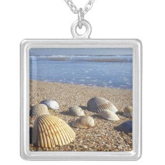 USA, Florida, Coastal Sea Shells Silver Plated Necklace