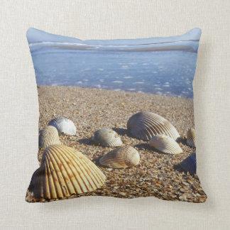 USA, Florida, Coastal Sea Shells Throw Pillow