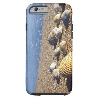 USA, Florida, Coastal Sea Shells Tough iPhone 6 Case