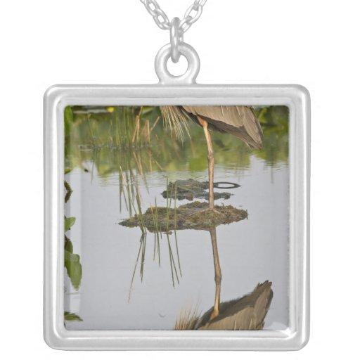 USA, Florida, Delray Beach. Great blue heron Pendants