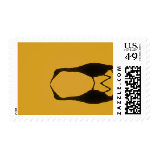 USA, Florida, Ding Darling National Wildlife Postage Stamp