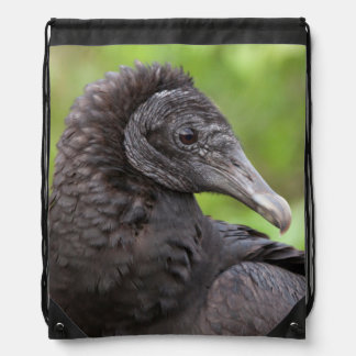 USA, Florida, Everglades National Park 2 Backpack