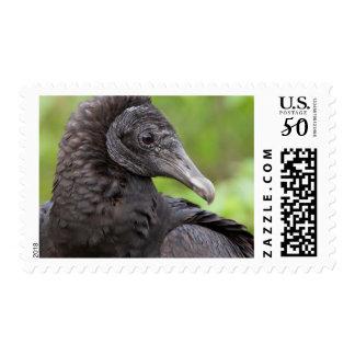USA, Florida, Everglades National Park 2 Postage