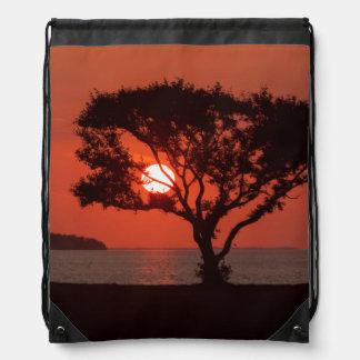 USA, Florida, Everglades National Park, Flamingo Drawstring Backpacks