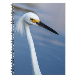 USA, Florida, Everglades National Park Note Books