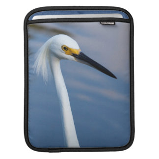 USA, Florida, Everglades National Park Sleeve For iPads