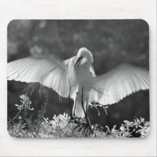 USA, Florida, Great Egret (Ardea alba) infrared 2 Mouse Pad