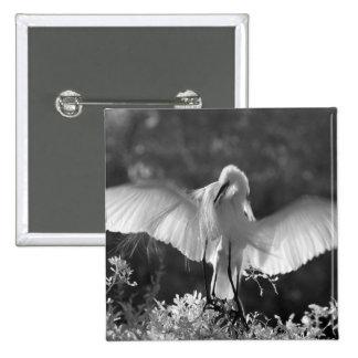 USA, Florida, Great Egret (Ardea alba) infrared 2 Pinback Button
