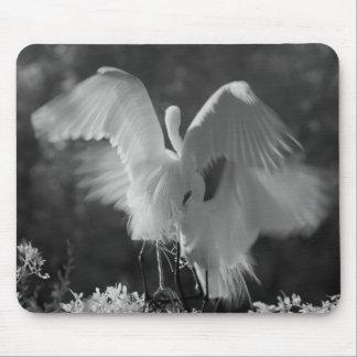 USA, Florida, Great Egret (Ardea alba) infrared 3 Mouse Pad