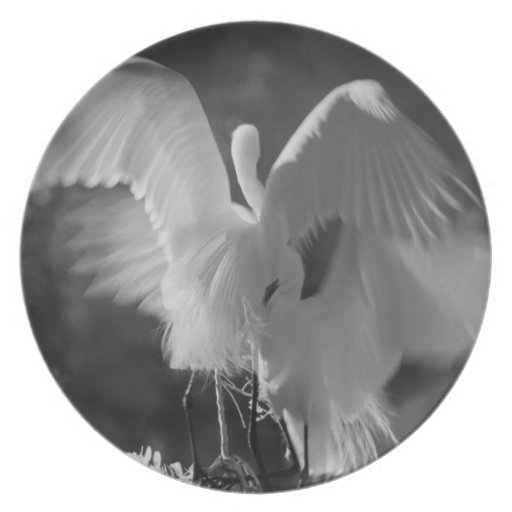 USA, Florida, Great Egret (Ardea alba) infrared 3 Dinner Plates