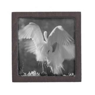 USA, Florida, Great Egret (Ardea alba) infrared 3 Premium Jewelry Box