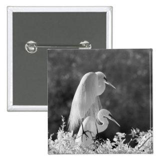 USA, Florida, Great Egret (Ardea alba) infrared Pinback Button