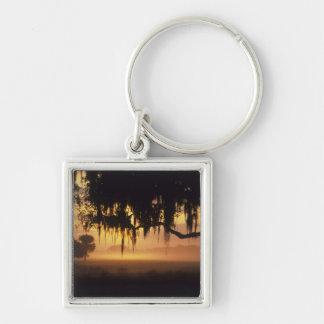 USA, Florida, Lake Kissimmee. Sunrise silhouette Keychain