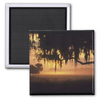 USA, Florida, Lake Kissimmee. Sunrise silhouette Magnet
