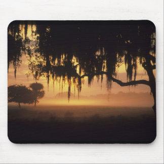 USA Florida Lake Kissimmee Sunrise silhouette Mouse Pads