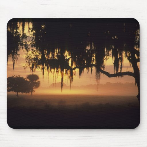 USA, Florida, Lake Kissimmee. Sunrise silhouette Mouse Pads