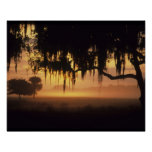 USA, Florida, Lake Kissimmee. Sunrise silhouette Print