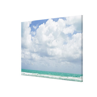 USA, Florida, Miami, Landscape with sea Stretched Canvas Print